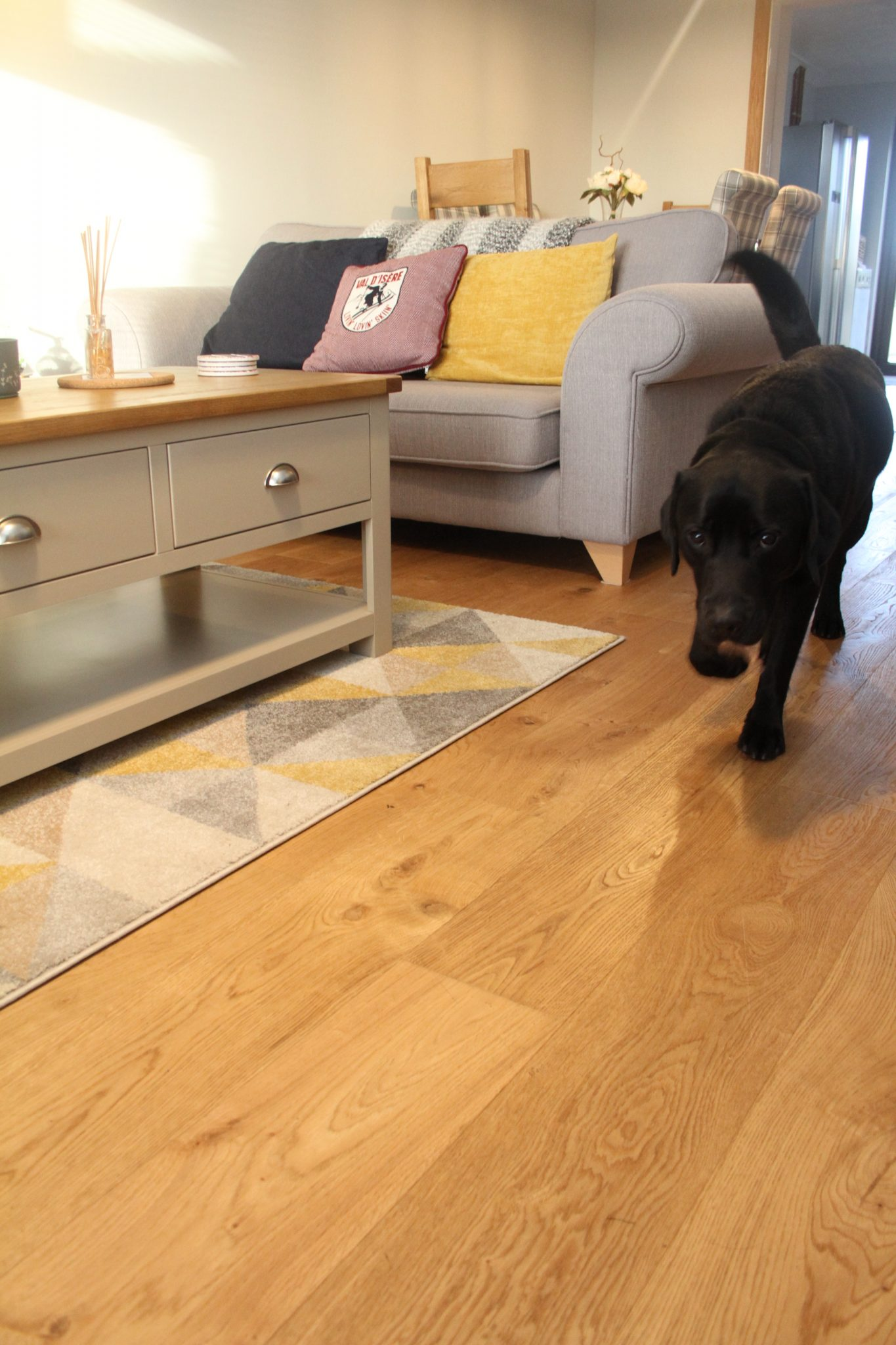 Brushed & Natural Oiled Oak Floor with dog
